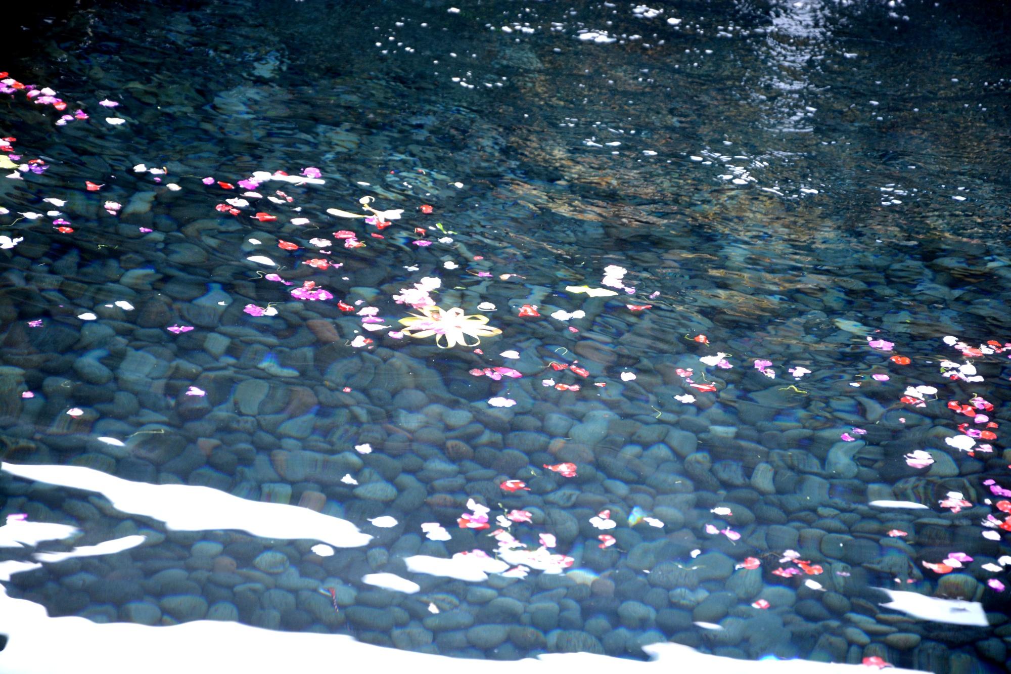 Reiseblog, Bali,
