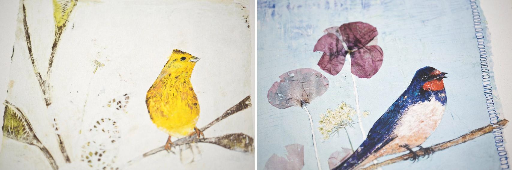 Colipi, Goldammer, Print, Bilder