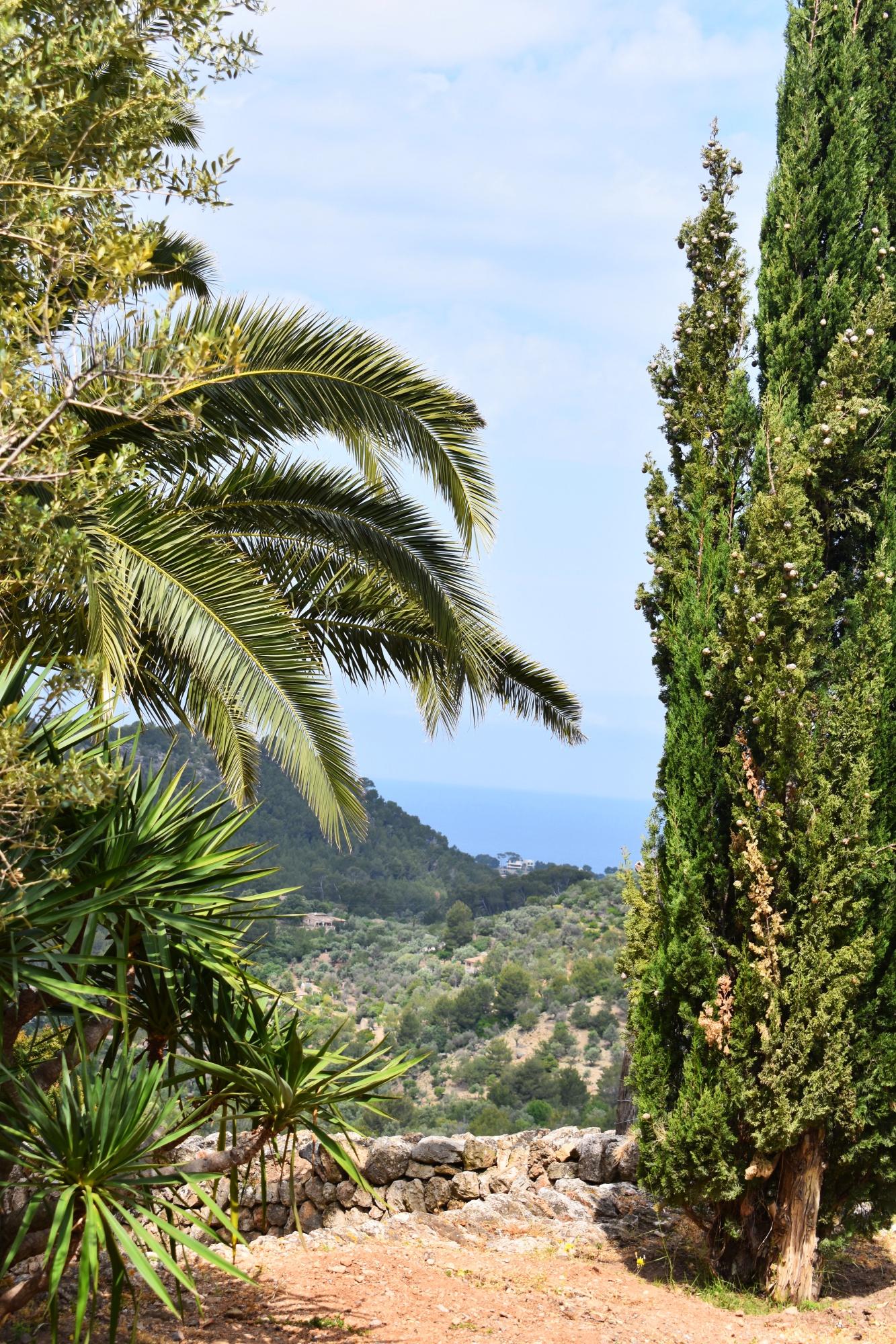 Mallorca, Soller, Reisen, Reiseblog